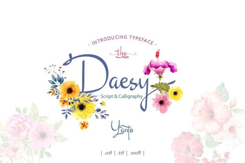 Daesy Script [1 Font]   The Fonts Master