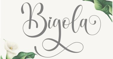 Bigola [1 Font] | The Fonts Master
