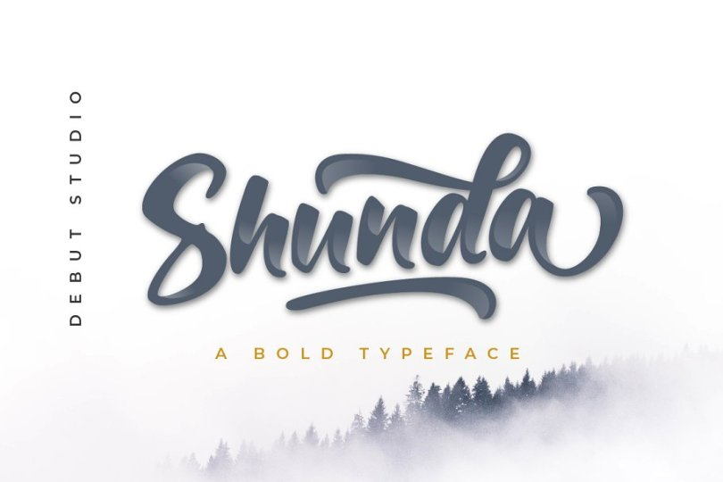 Shunda [1 Font] | The Fonts Master