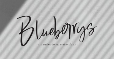 Blueberrys [1 Font] | The Fonts Master