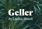 Geller Super Family [20 Fonts] | The Fonts Master