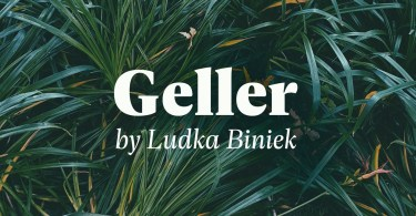 Geller Super Family [20 Fonts] | The Fonts Master