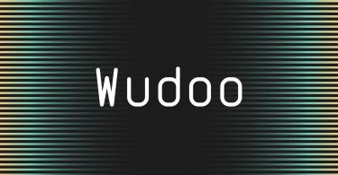 Wudoo Mono [3 Fonts] | The Fonts Master