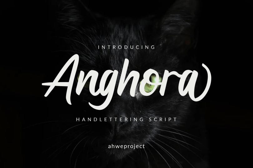 Anghora [1 Font]   The Fonts Master