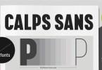 Calps Sans Super Family [36 Fonts] | The Fonts Master