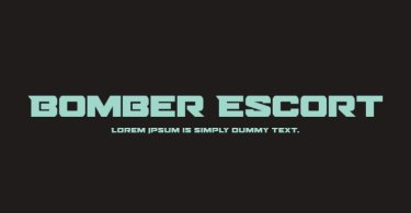 Bomber Escort [16 Fonts] | The Fonts Master