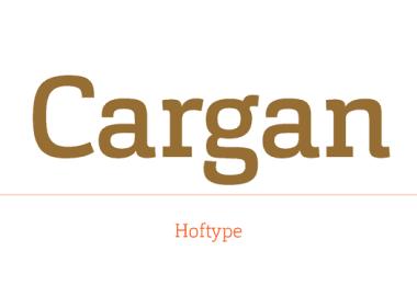 Cargan Super Family [16 Fonts]   The Fonts Master
