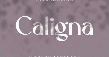 Caligna [1 Font] | The Fonts Master