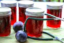Jars of jam on a table, with plums