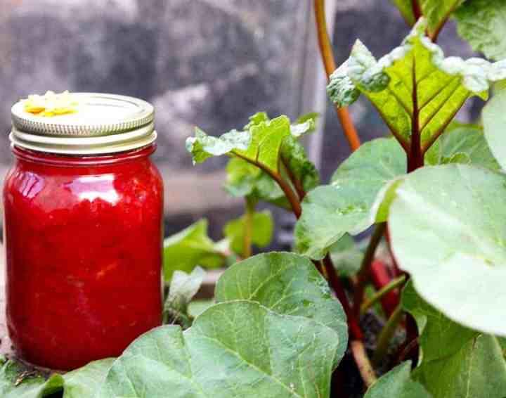 A jar of jam in a garden.