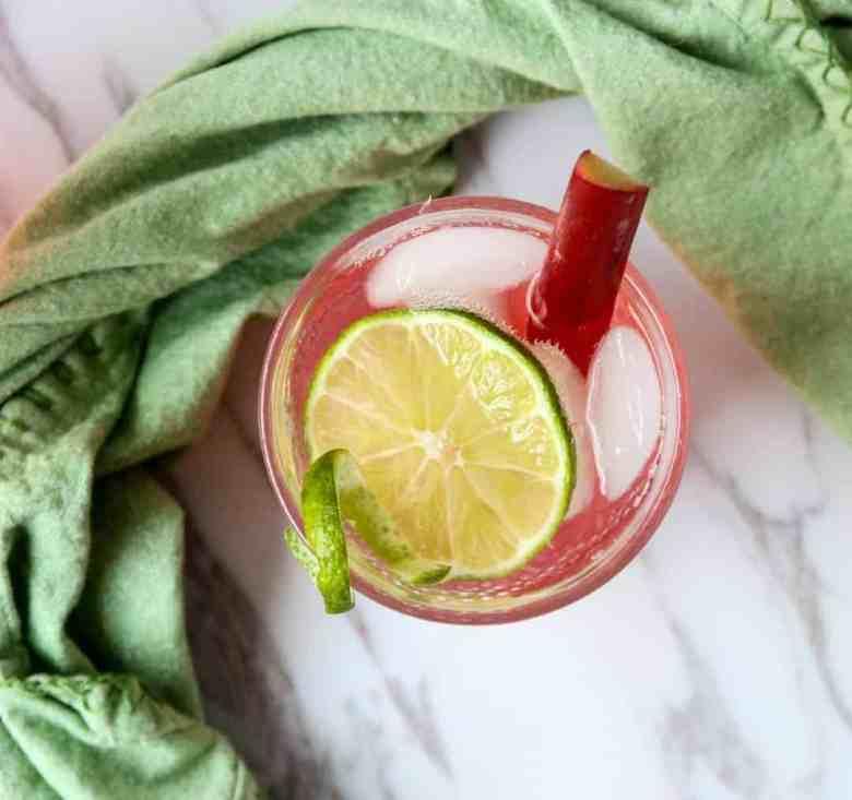 Rhubarb Gin & Tonic