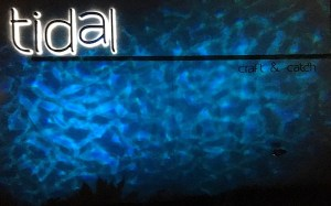 Tidal – A Wave of Goodness