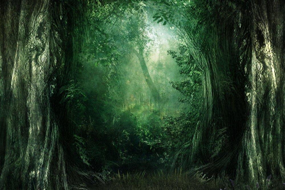 Fantasy Wald