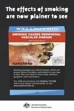 peripheral vascular disease poster 200x300 - Podiatry Foot Health Tips