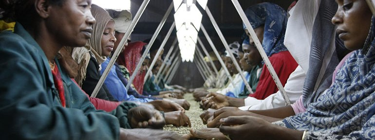 The coffee industry is especially bug in East Africa, but much of it is processed in Europe instead of inside Africa.