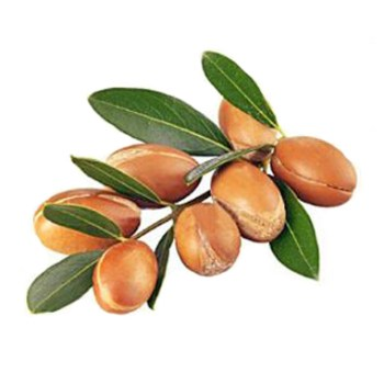 argan oil organic
