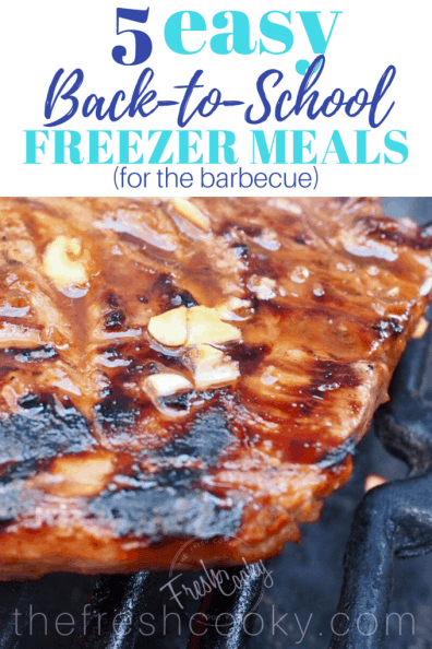 5 Easy Back-to-School freezer meals Pin | www.thefreshcooky.com