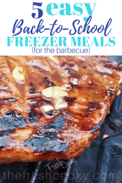 Get ready for the busy back-to-school days with these 5 simple, delicious and healthy meals! All ready for the grill! #freezerfriendly #freezermeals #grill #marinades #backtoschool #thefreshcooky #easy #mealprep #beef #pork #chicken
