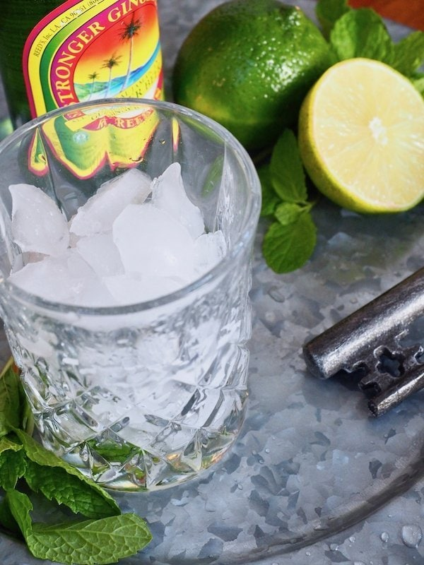 cocktail glass, filled with ice, lime and ginger beer | www.thefreshcooky.com