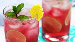 Sparkling Blueberry Mojito Punch