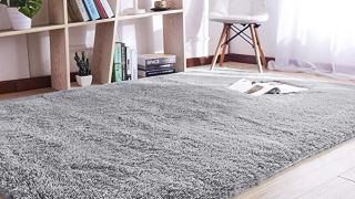 Noahas Super Soft Modern Shag Gray Area Rugs Fluffy Carpet
