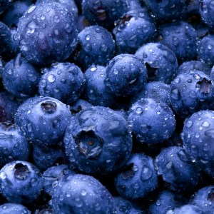 Fresh-Blueberries
