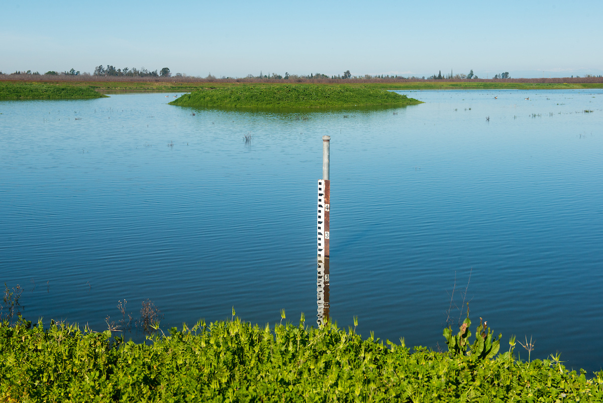 groundwater recharge northern California
