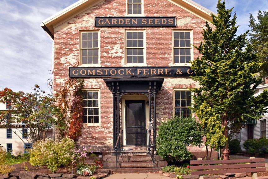 comstock ferre, heirloom seeds, old wethersfield, ct, connecticut,, history