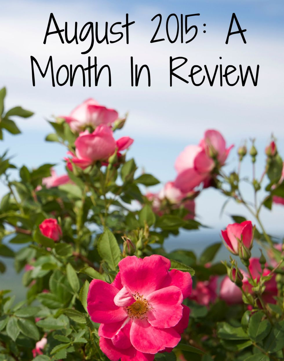 August Review 2015