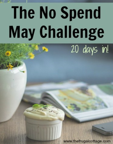 No Spend May 20