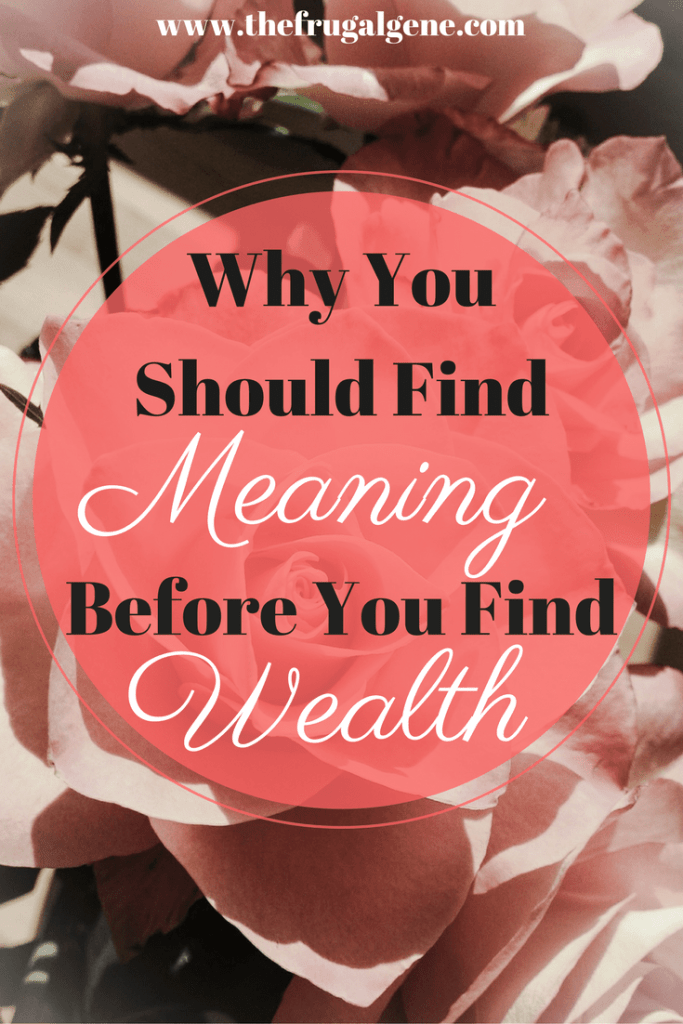 Why You Should Find Meaning Before You Find Wealth