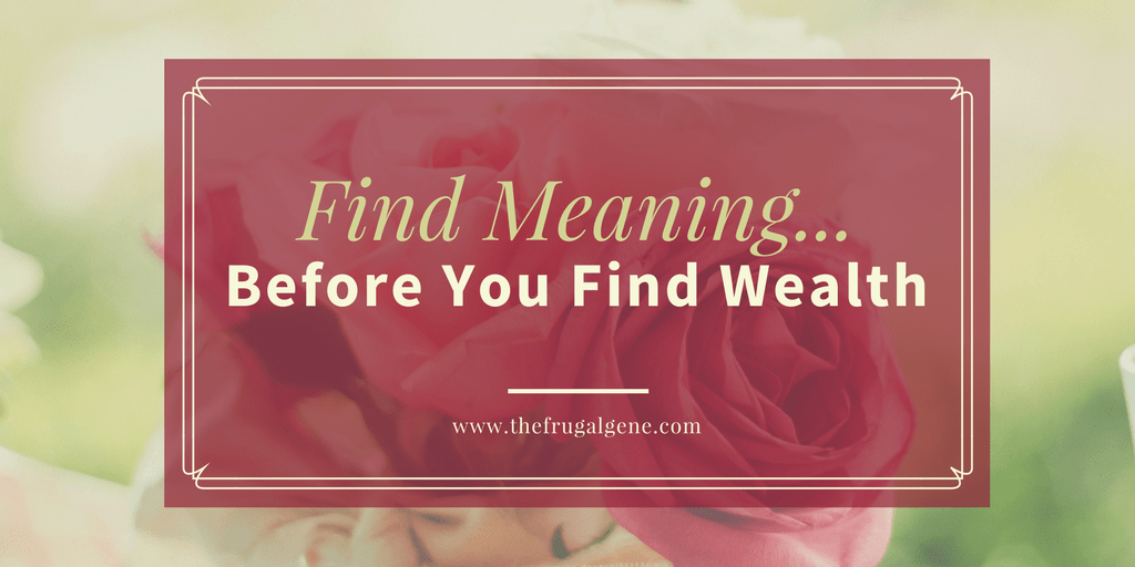 Find Meaning Before You Find Wealth