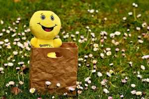 sale-amazon-happy-haul