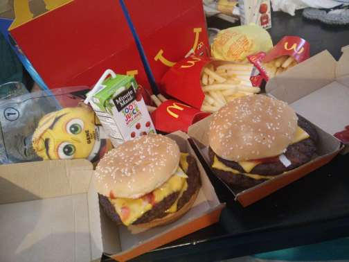 mcdonalds-happy-meal-and-burger, Family Income Report