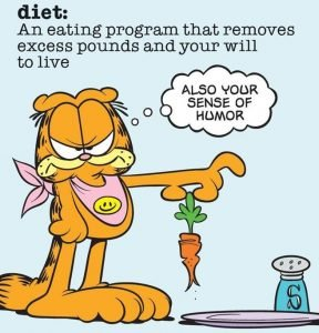 diet-definition-Garfield-funny