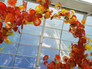 seattle glass chihuly garden