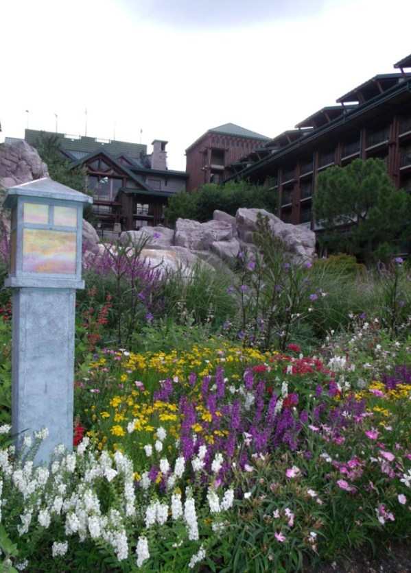 Flowers at Disney's Wilderness Lodge