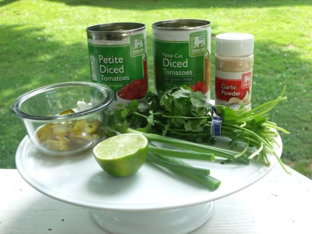 ingredients to make salsa