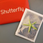 Shutterfly: 10 Free Greeting Cards – Just Pay Shipping