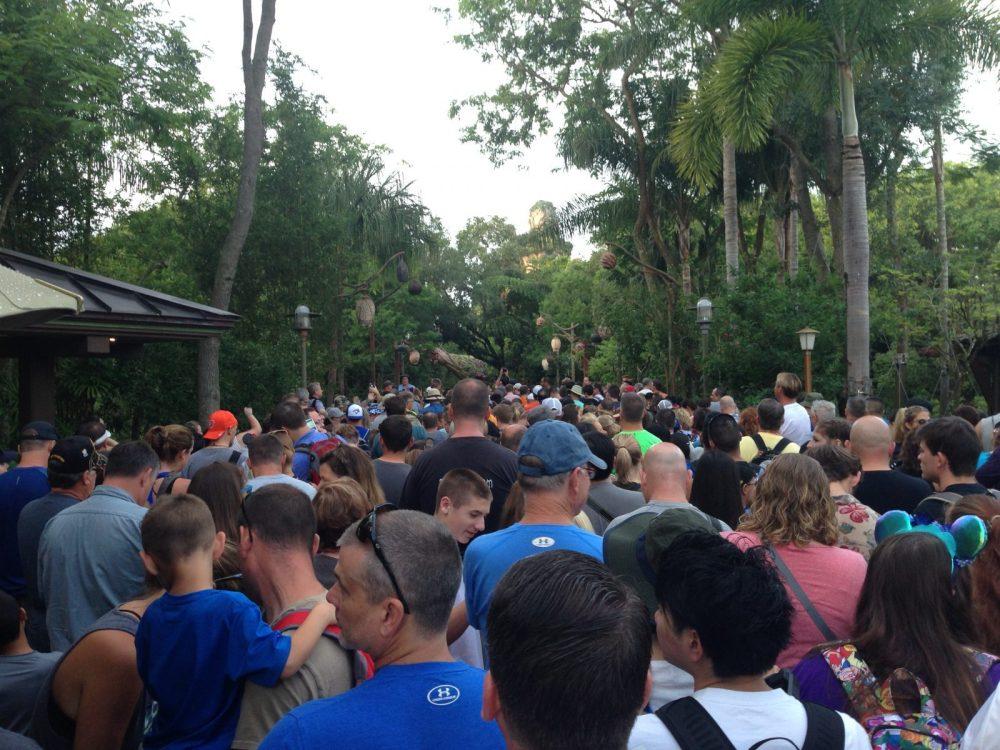 Crowd of people at Animal Kingdom