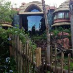 An Overview of Disney's Animal Kingdom Lodge FREE Resort Activities!