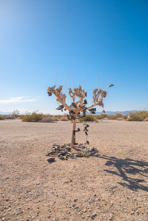 The Shoe Tree that stands near the entrance to Slab City