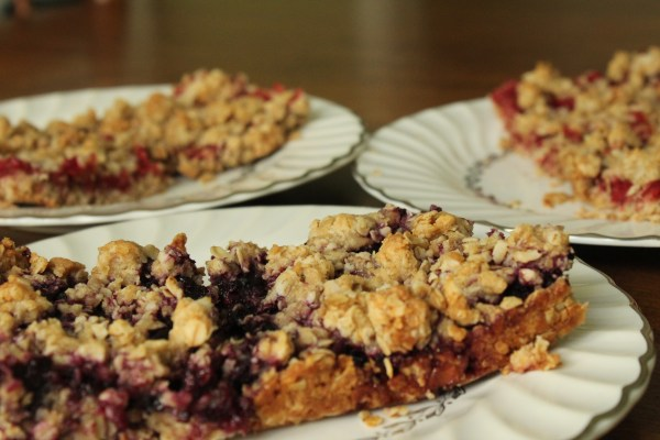 Berry Oatmeal Bars Healthy Easy Quick Close Up The Fundamental Home