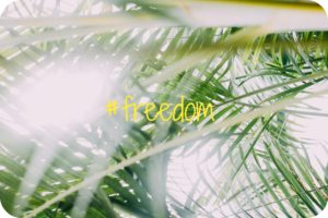 The Funky Fresh Project Playlist Freedom
