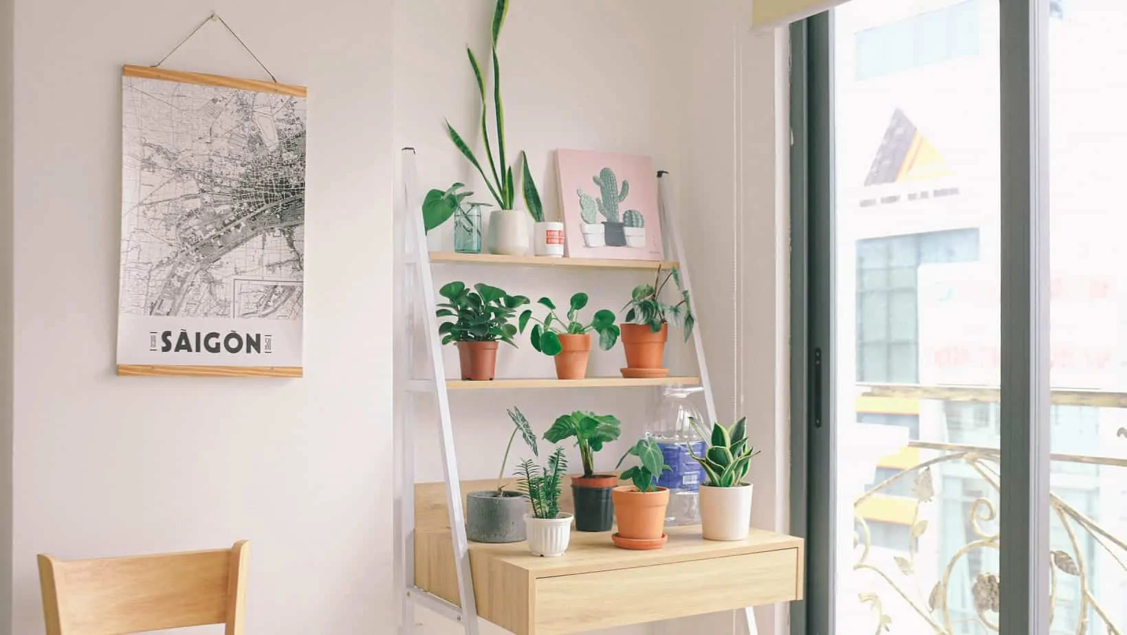 minimalism-beginners
