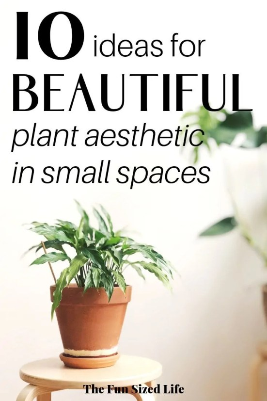 Creating a gorgeous plant aesthetic in small space decorating is very doable. Here are 10 decorating tips for any small or minimalist home. #smallspacedecorating #smallspaces #minimalisthome #minimalistliving #plantaesthetic #indoorplants