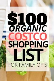$100 Healthy Organic Costco Shopping List for a Family of 5