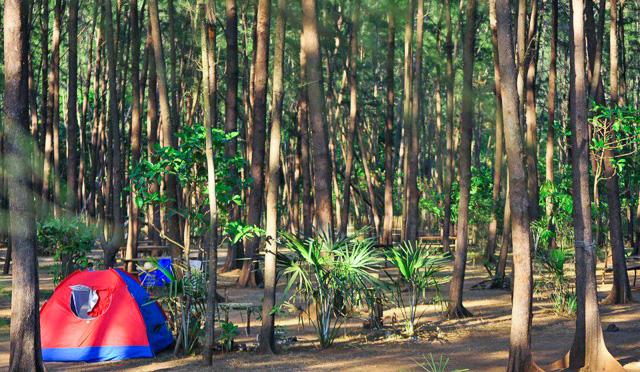 Anawangin campsite.