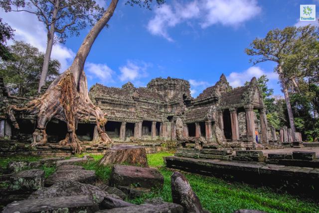Preah Khan Temple dedicated to King Jayavarman VII's father.