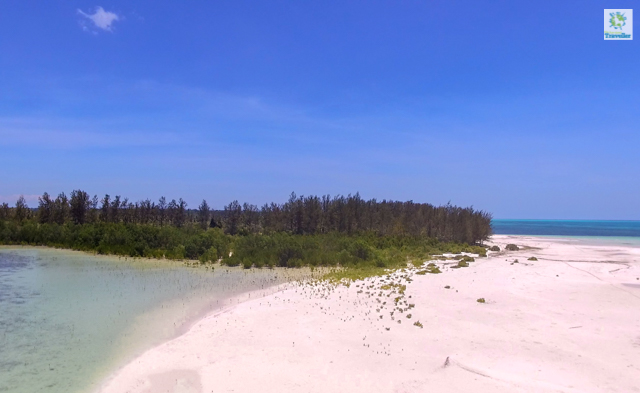 A wide view of Punta Sibaring 2. At the far right is where stingrays mostly frequent especially in the morning.